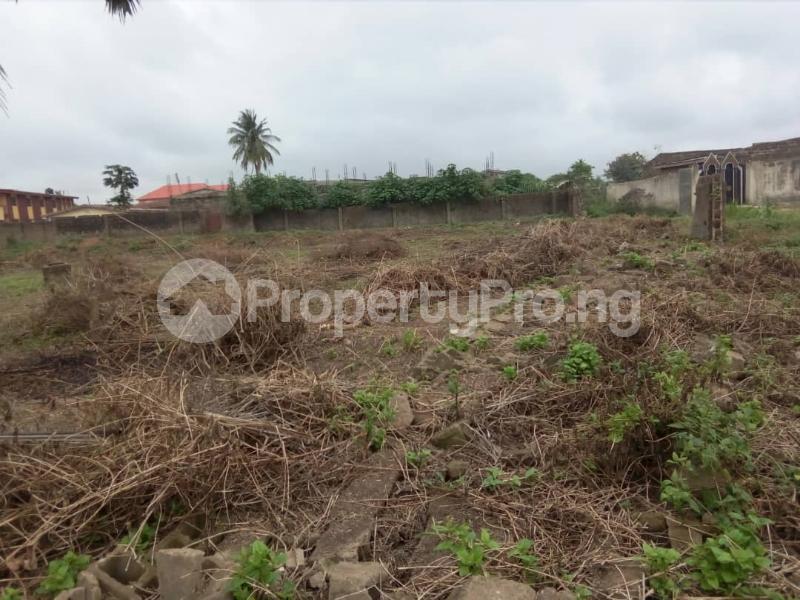Mixed   Use Land for sale Alalubosa Area, Brewery Ibadan Egbeda Oyo - 7