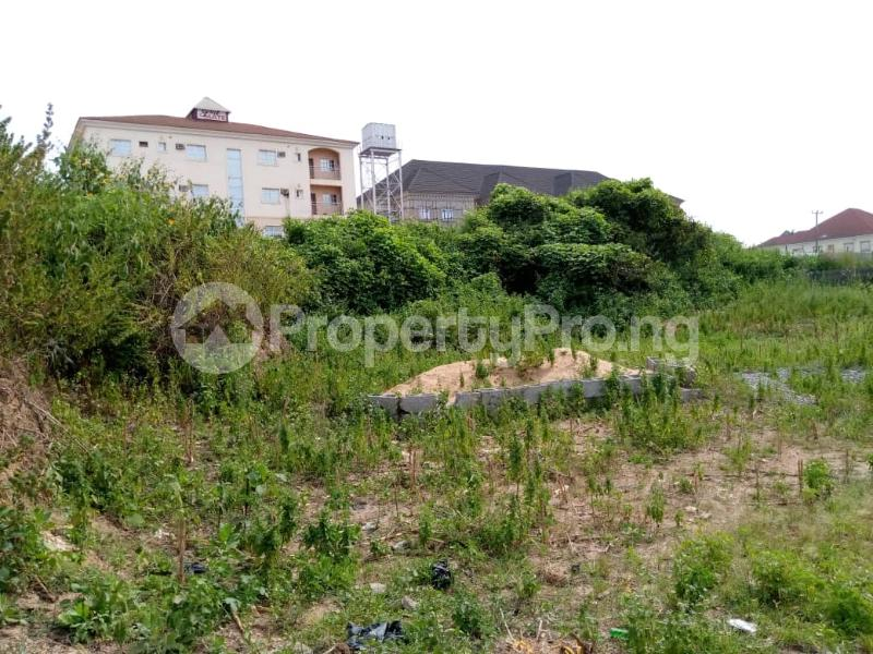 Land for sale  Close to American International School Durumi Abuja - 4