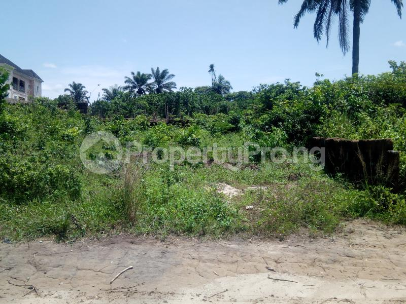 Commercial Land Land for sale Umuuchichi Aba Abia - 0
