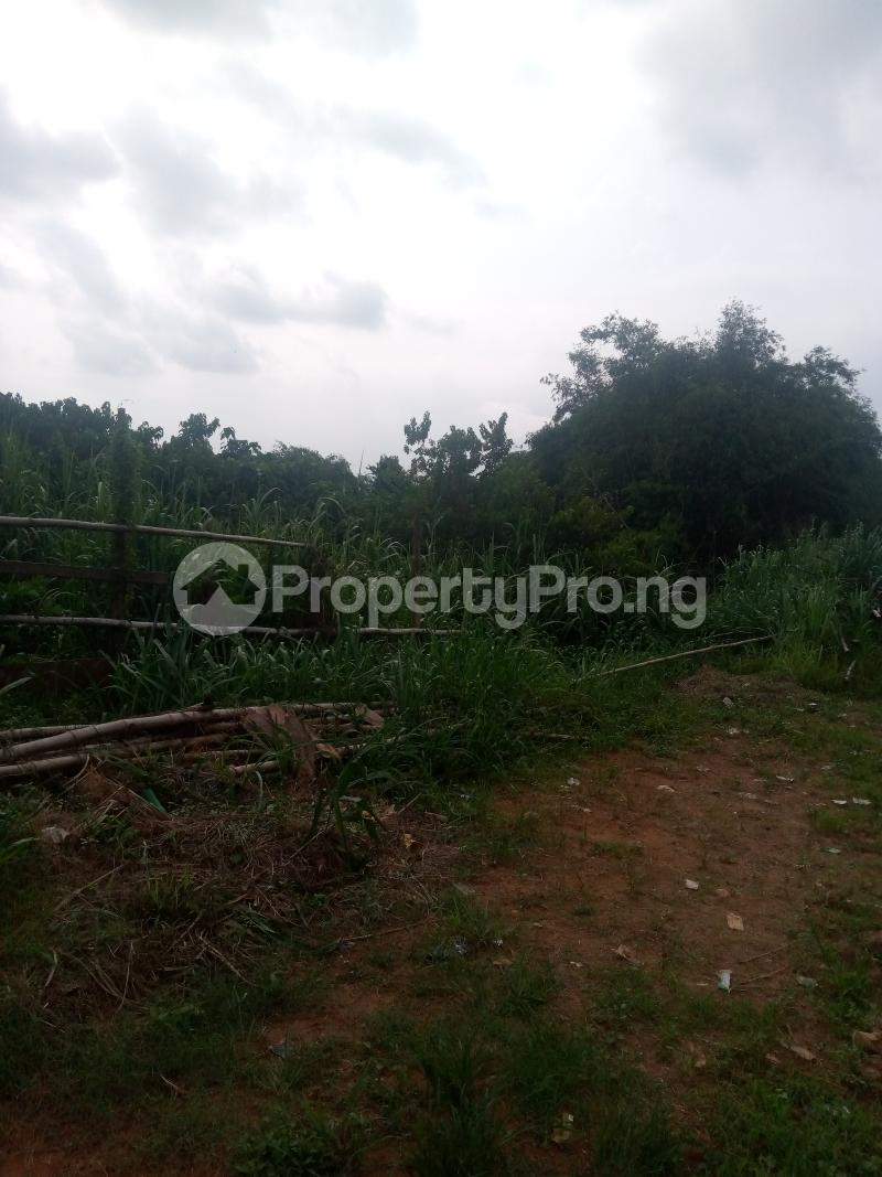Land for sale Abesan Estate. Ipaja Ipaja Lagos - 1