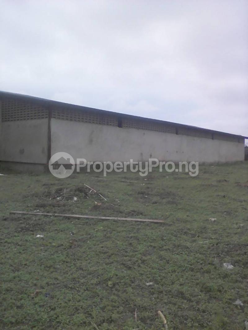 6 bedroom Warehouse Commercial Property for sale Lusada opp Lora international school in Agbara industrial estate Along Agbara/Atan Road, Imutun Ayanre Igbese Ado-Ode, Ota LGA, Ogun State Agbara Agbara-Igbesa Ogun - 12
