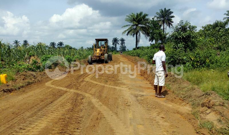 Mixed   Use Land Land for sale Abara Etche Rivers - 0