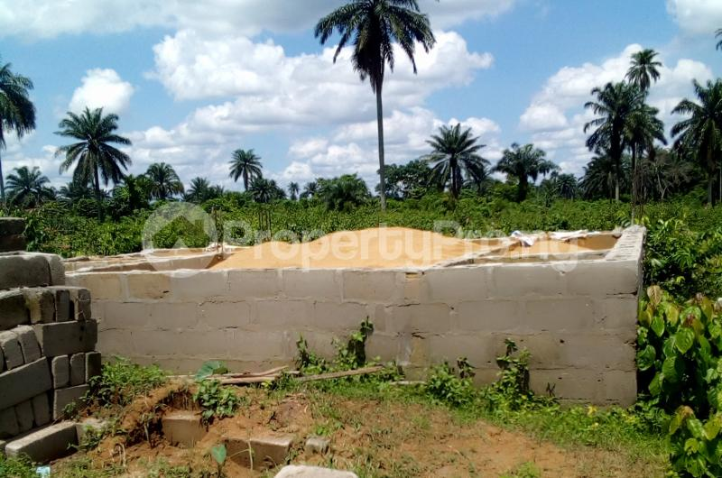 Mixed   Use Land Land for sale Abara Etche Rivers - 2