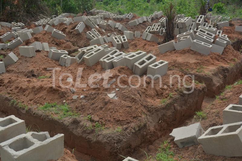Land for sale Itori Ewekoro Ogun - 2