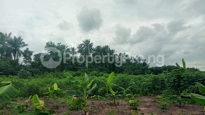 Mixed   Use Land for sale Pti Road Warri Warri Delta - 3