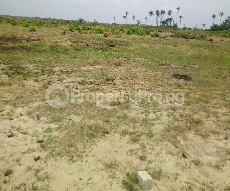 Mixed   Use Land Land for sale Lekki Gold City, Facing Express Ibeju-Lekki Lagos - 1