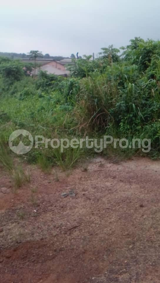 Commercial Land Land for sale Located Beside An Already Existing Poultry Farm At Ladeke Village Off Itokin Road Epe Lagos Nigeria  Epe Road Epe Lagos - 2