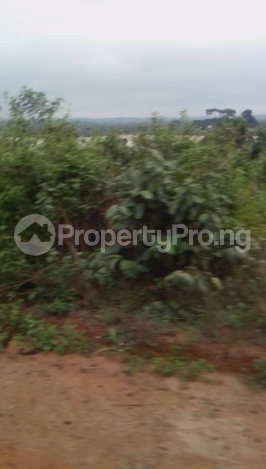 Commercial Land Land for sale Located Beside An Already Existing Poultry Farm At Ladeke Village Off Itokin Road Epe Lagos Nigeria  Epe Road Epe Lagos - 4