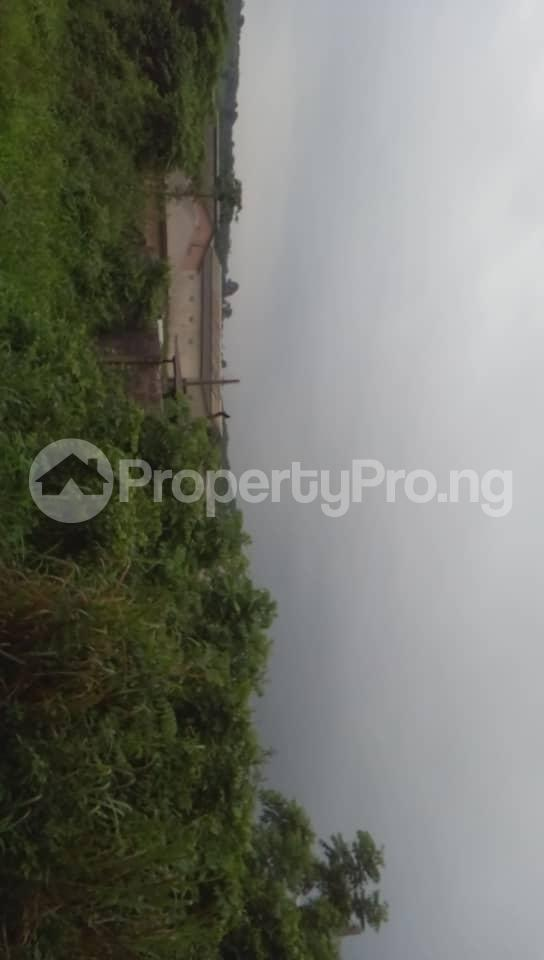 Commercial Land Land for sale Located Beside An Already Existing Poultry Farm At Ladeke Village Off Itokin Road Epe Lagos Nigeria  Epe Road Epe Lagos - 6