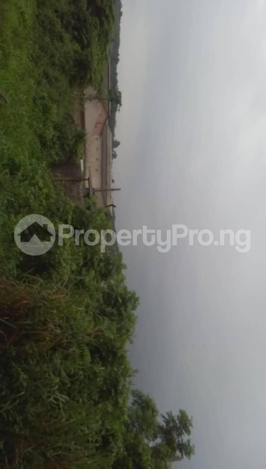 Commercial Land Land for sale Located Beside An Already Existing Poultry Farm At Ladeke Village Off Itokin Road Epe Lagos Nigeria  Epe Road Epe Lagos - 5