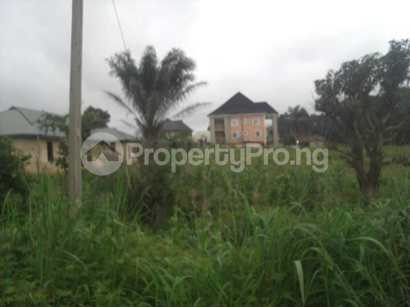 Commercial Land Land for sale Located Along The  Road, Agulare Anambra State Nigeria  Anambra Anambra - 11