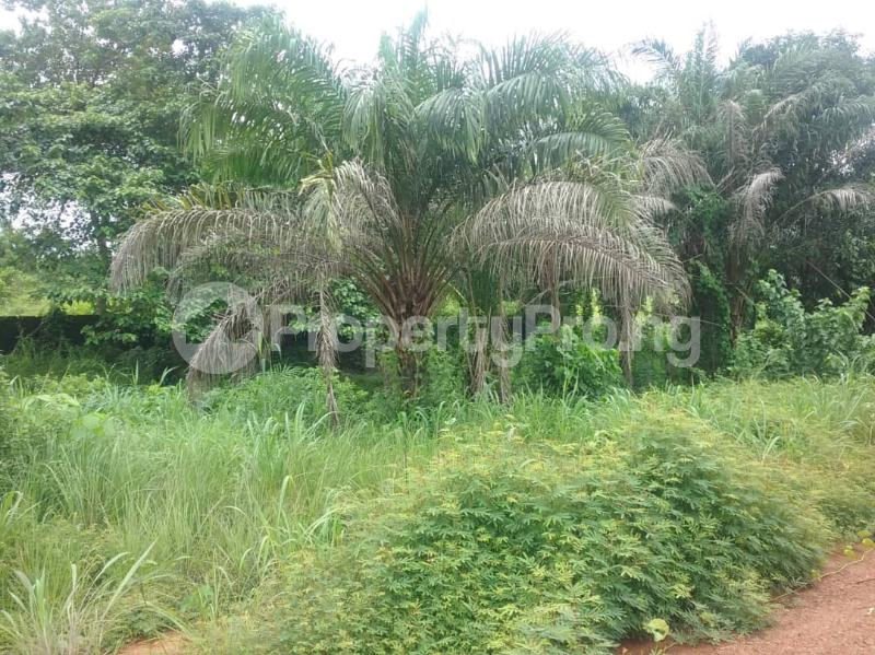 Commercial Land Land for sale Located Along The  Road, Agulare Anambra State Nigeria  Anambra Anambra - 4