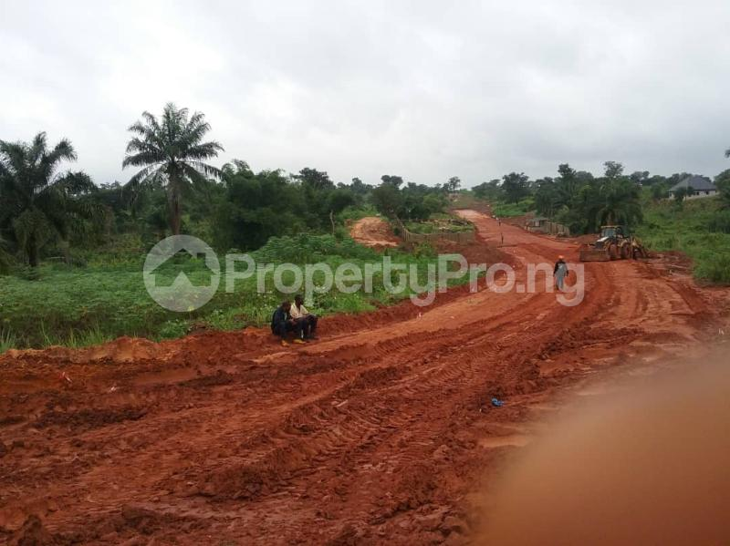 Commercial Land Land for sale Located Along The  Road, Agulare Anambra State Nigeria  Anambra Anambra - 3