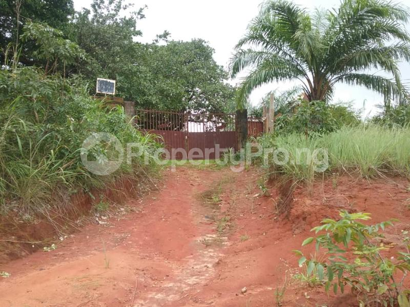 Commercial Land Land for sale Located Along The  Road, Agulare Anambra State Nigeria  Anambra Anambra - 6