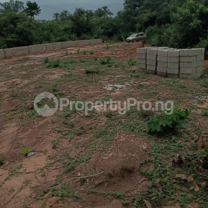Mixed   Use Land Land for sale Portharcourt Road, Mbirichi Owerri Imo - 2