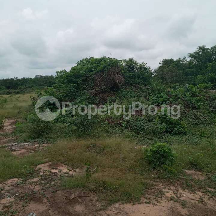 Mixed   Use Land Land for sale Portharcourt Road, Mbirichi Owerri Imo - 3