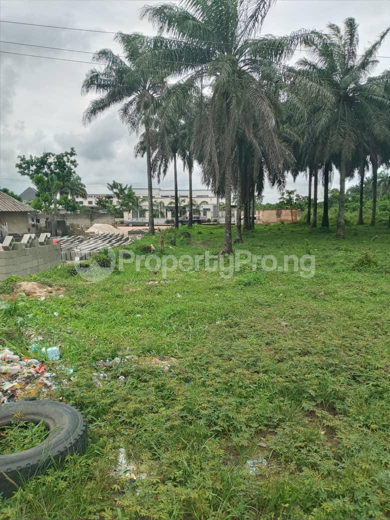 Mixed   Use Land Land for sale Portharcourt Road, Mbirichi Owerri Imo - 9
