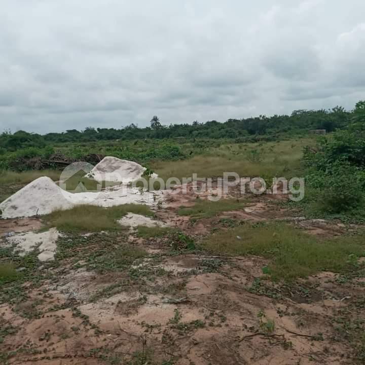 Mixed   Use Land Land for sale Portharcourt Road, Mbirichi Owerri Imo - 6