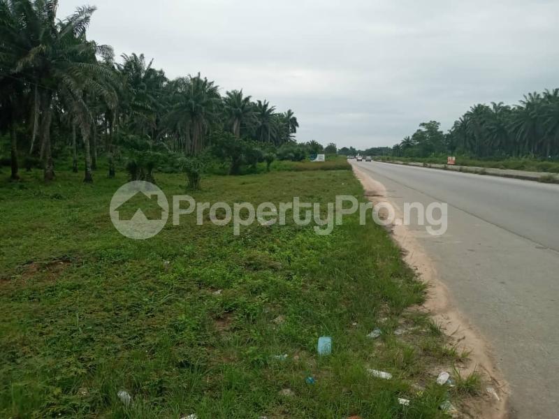 Mixed   Use Land Land for sale Portharcourt Road, Mbirichi Owerri Imo - 8