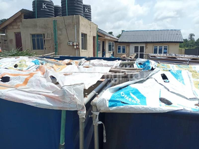 Tank Farm Commercial Property for sale WestAgro Farm located at Ode Remo Ogun State is the fastest growing farm in the country Ode Remo Remo North Ogun - 6