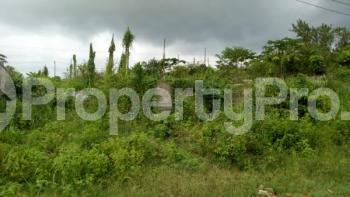 Mixed   Use Land Land for sale Tipper Garage, Chinese Farm Compay Agbara Agbara-Igbesa Ogun - 0