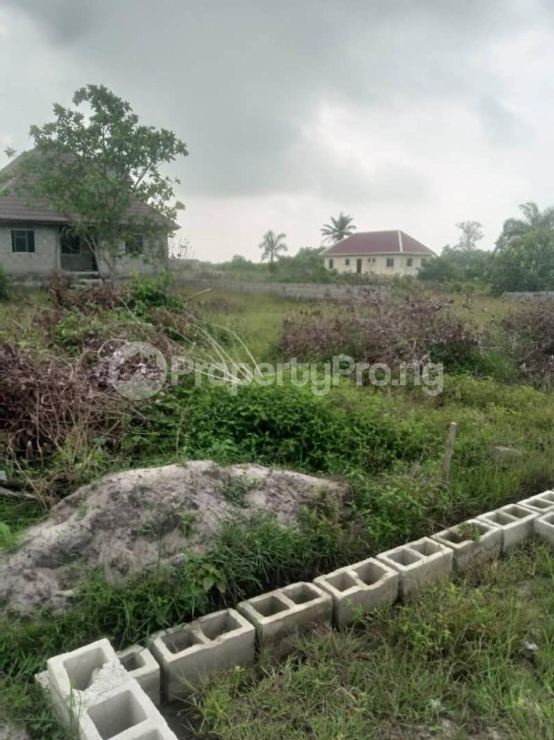 Mixed   Use Land Land for sale Majo Creek View Akpakin Town Facing Express by Dangote Jetty Ibeju-lekki Lagos  LaCampaigne Tropicana Ibeju-Lekki Lagos - 0