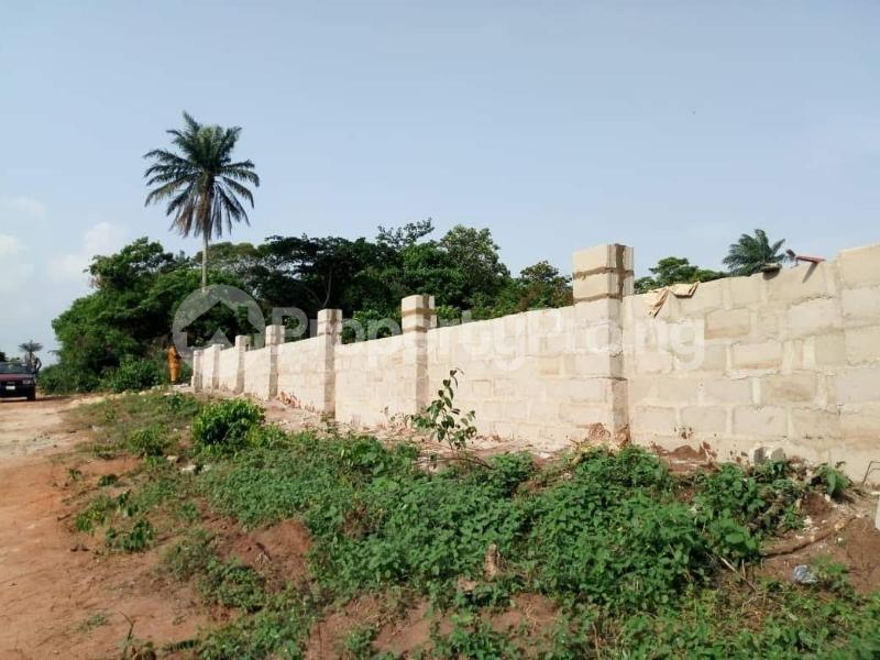 Residential Land Land for sale Behind Asaba Airport and 2nd Niger Bridge Asaba Delta - 0