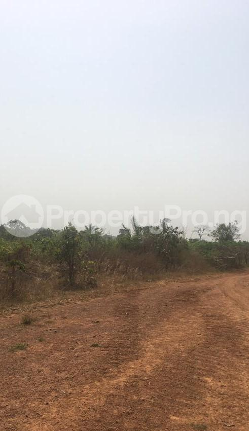Commercial Land for sale Airport Asaba Asaba Delta - 0