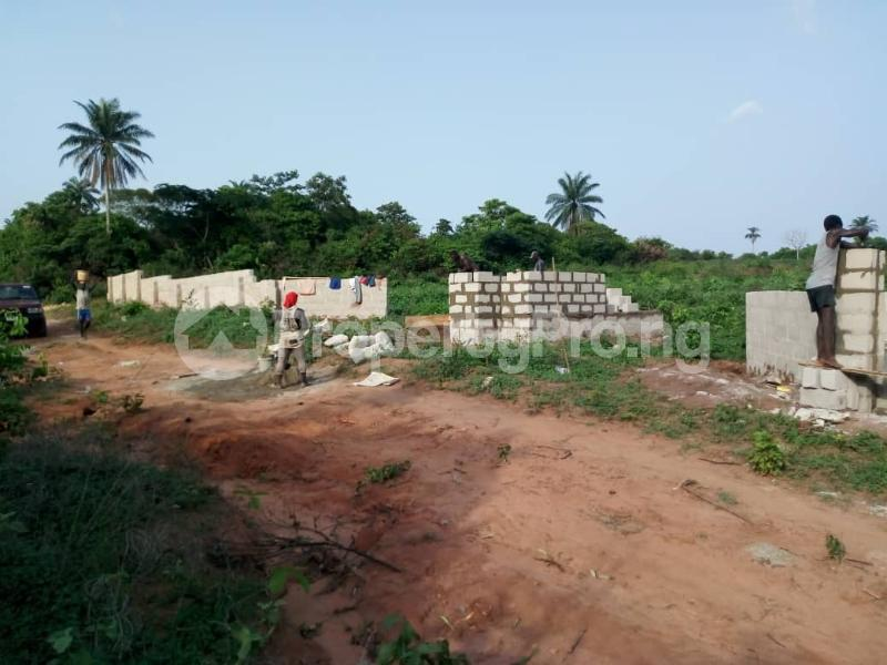 Serviced Residential Land Land for sale Behind Asaba Airport and 2nd Niger Bridge Proposed Link Road.  Asaba Delta - 1