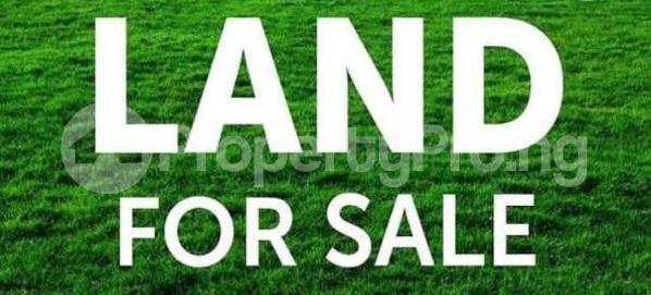Residential Land Land for sale Off Onitsha Road, Irete Owerri Imo - 1