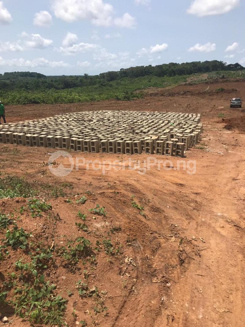 Mixed   Use Land Land for sale Ilara Road Epe Epe Road Epe Lagos - 5