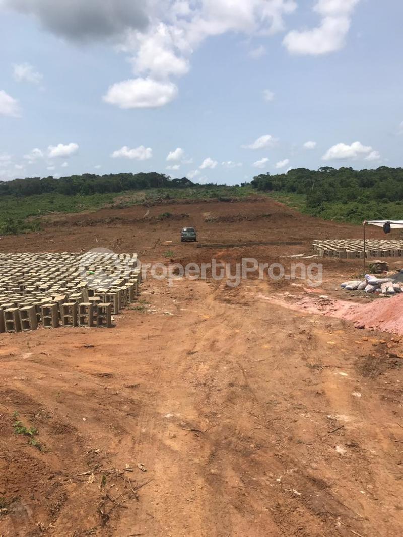 Mixed   Use Land Land for sale Ilara Road Epe Epe Road Epe Lagos - 3