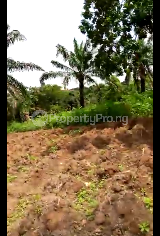 Mixed   Use Land Land for sale Umuahia South Abia - 0
