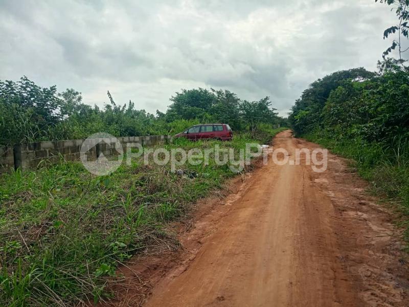 Mixed   Use Land for sale Vip Garden Phase 2 Onipanu Iresa Apa Road Ogbomoso Oyo State Ogbomosho Oyo - 3