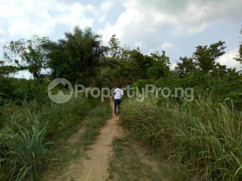 Commercial Land Land for sale Iddo town off ido motor park Ido Oyo - 0