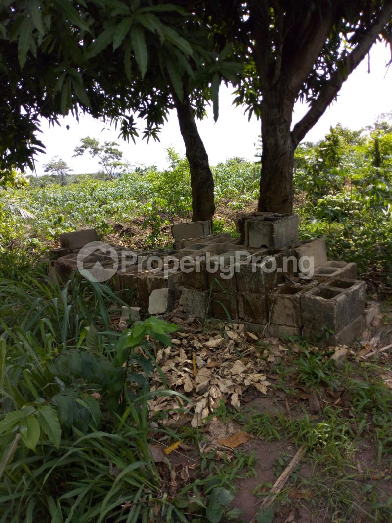 Commercial Land Land for sale Iddo town off ido motor park Ido Oyo - 1