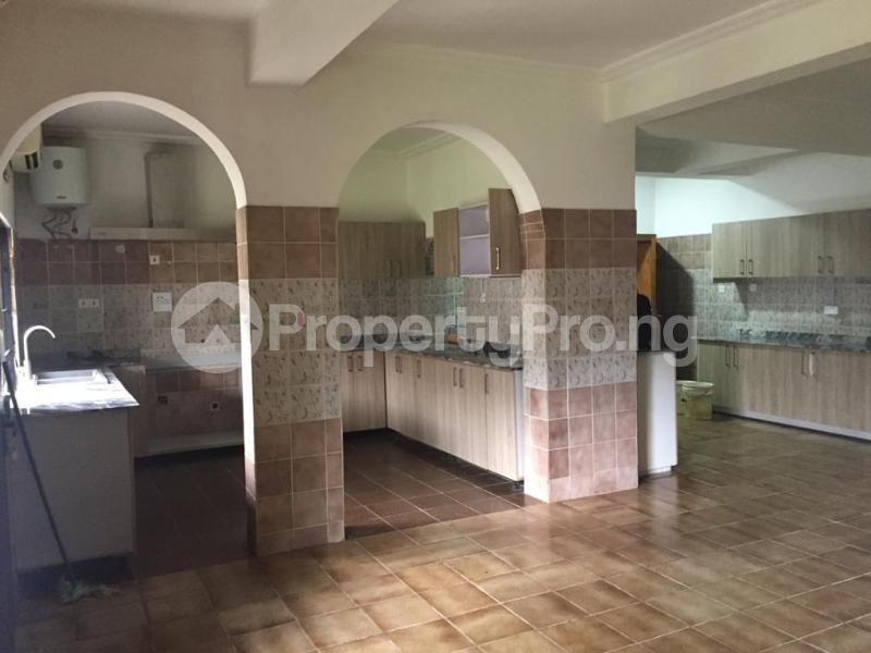10 bedroom Massionette for rent S Asokoro Abuja - 10