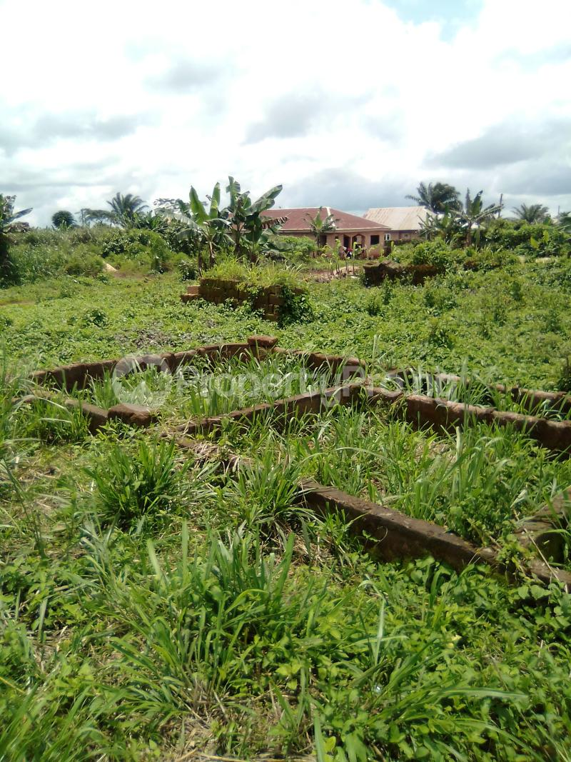 3 bedroom Residential Land Land for sale Egueka After Egba Junction Idunmwungha Town Benin Auchi Road Uhunmwonde Edo - 0