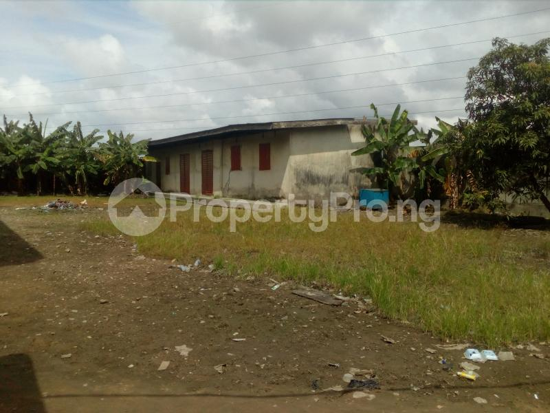 House for sale An office complex consisting of several offices on two plot off old Ojo road Ojo Ojo Lagos - 5