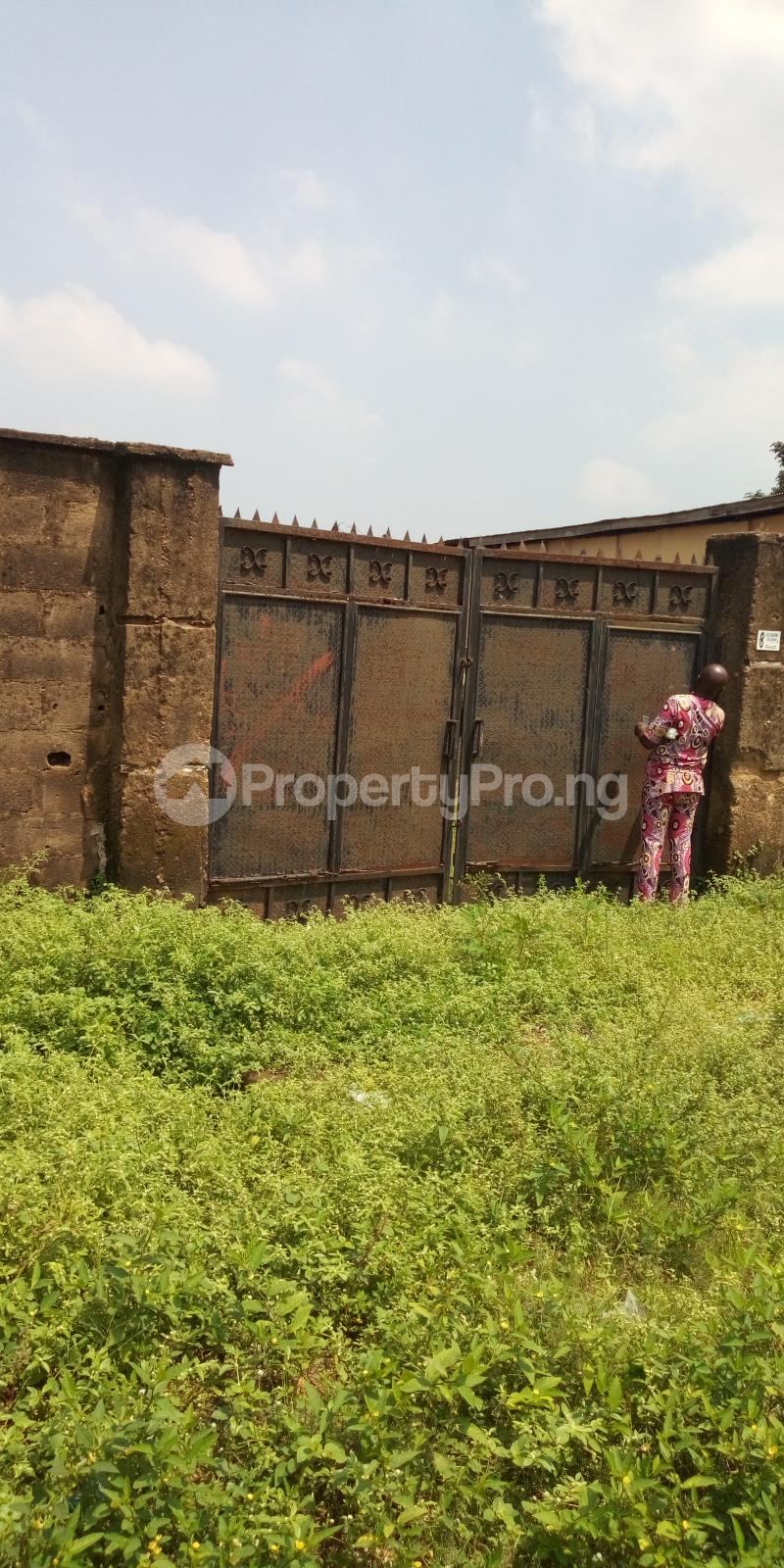5 bedroom Detached Duplex House for sale Shagari Est Ipaja road Lagos state  Ipaja road Ipaja Lagos - 6