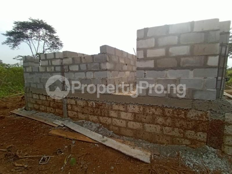 Residential Land for sale Ipo Abara Community Ikwerre Port Harcourt Rivers - 3