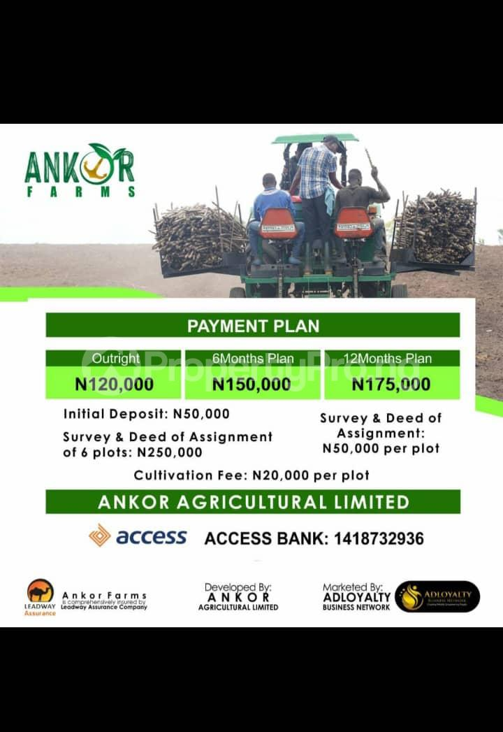 Industrial Land for sale Lanlate Ibadan Oyo - 1