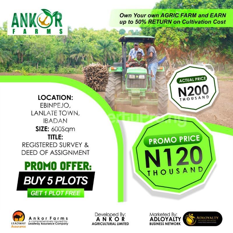 Industrial Land for sale Lanlate Ibadan Oyo - 0