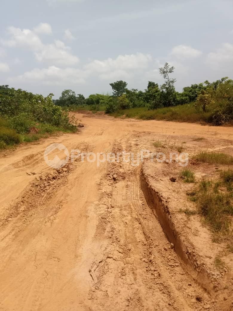 Mixed   Use Land Land for sale SILVER PARK ESTATE EMENE ENUGU STATE  Nkanu Enugu - 1