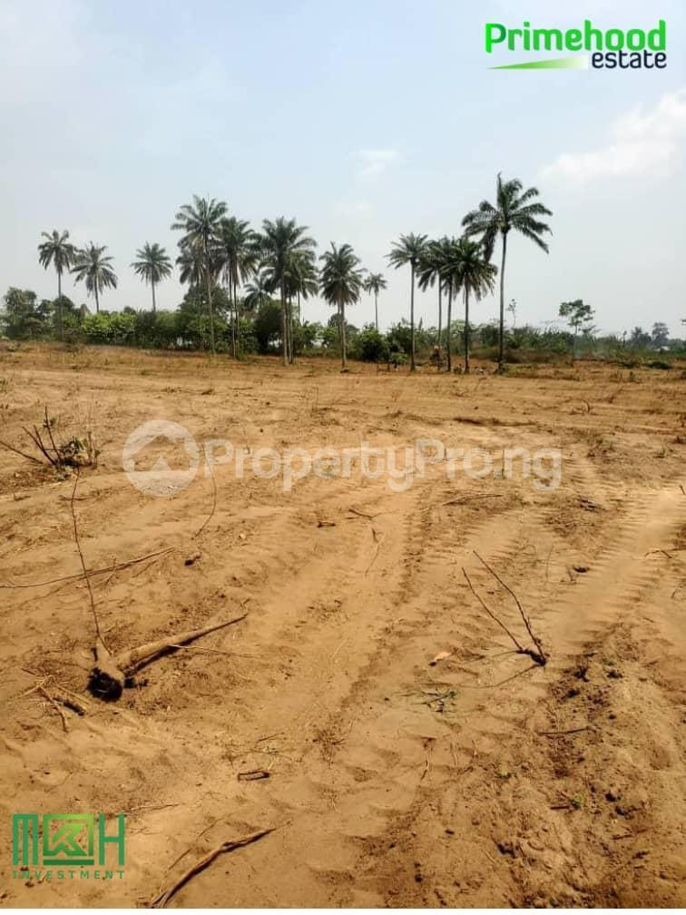 Land for sale Epe Lagos - 2