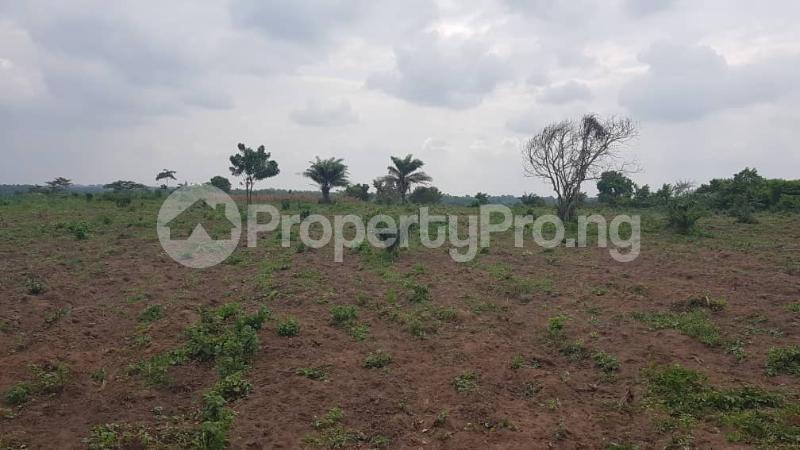 Residential Land for sale Ido Ibadan Oyo - 2