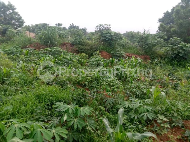 Land for sale Enugu Enugu - 0