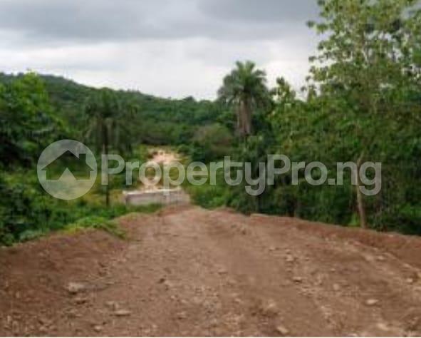 Mixed   Use Land Land for sale Close to winners Estate, Trans-ekulu Enugu Enugu - 2