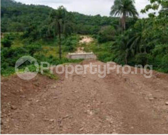 Mixed   Use Land Land for sale Close to winners Estate, Trans-ekulu Enugu Enugu - 0