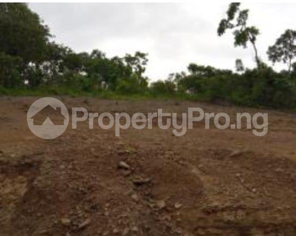 Mixed   Use Land Land for sale Close to winners Estate, Trans-ekulu Enugu Enugu - 4